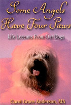 Some Angels Have Four Paws: Life lessons from our dogs
